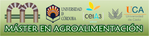 Magro Cabecera web